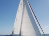 Ausail Marine Group - Catalina Yachts - Catalina 385 Sailing Yacht